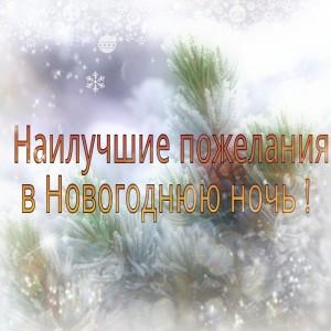 novogodnyaya-noch
