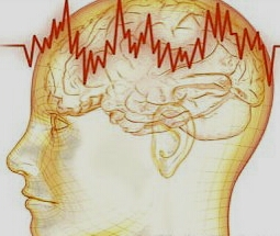 ritmy-mozga
